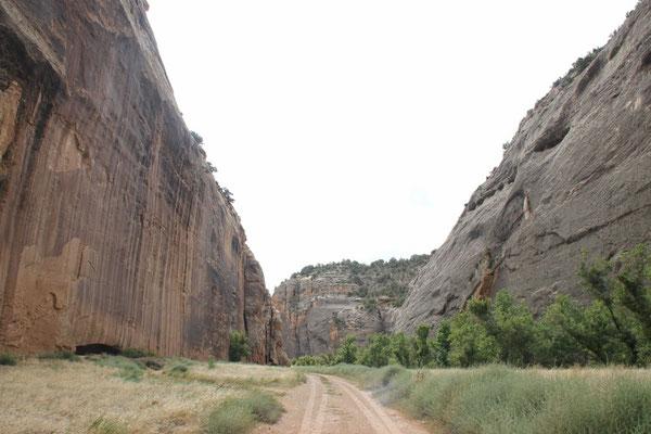 Die Fahrt aus dem Canyon heraus.