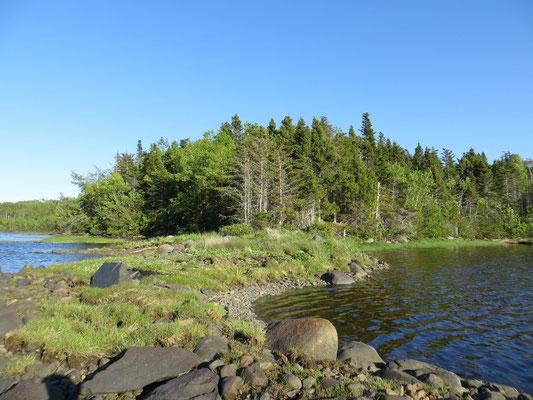 überall schöne Seen umgeben von Wald