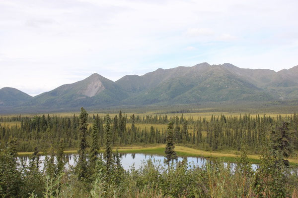 Auch im Wrangell St. Elias National Park and Preserve gibt es Seen...