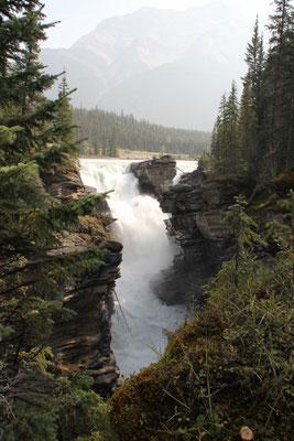 Man würde nicht denken, dass es nach diesem Wasserfall...