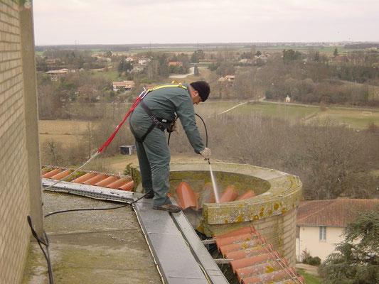 Dépigeonnage - Haute Garonne - Nettoyage avant toit.