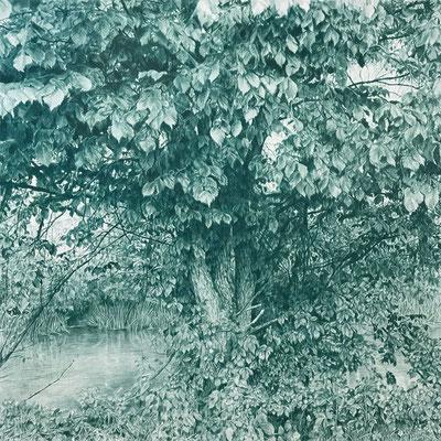 Deep cobalt green. Lápiz de color sobre papel pegado a dibond de aluminio. 80 x 80 cm.