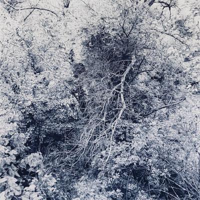 Dark indigo. Lápiz de color sobre papel pegado a dibond de aluminio. 110 x 110 cm.