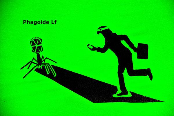 T-Shirt Motiv Phaogoide LF (Virus als Raumsonde). Klimaneutral, fair und bioologisch produziertes Textil