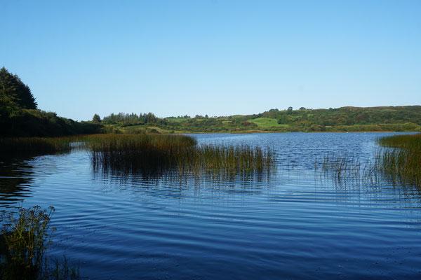 Corran Lake - just beside Ballyroe