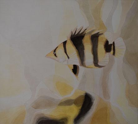 Tigerbarsch, 66 x 73 cm. öl auf Leinwand. 1300 CHF.