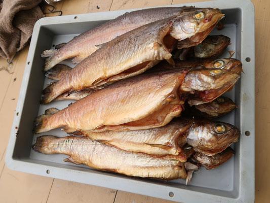 Forellen oder Lachsforellen - hausgeräuchert