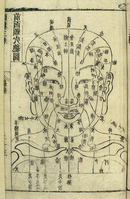 Acupuncture chart of front of head, 17th C. Chinese woodcut