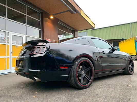 Ford Mustang GT 5.0 ab Service und MFK.😎