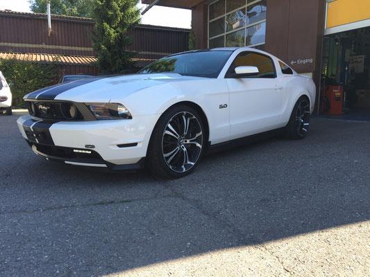 Mustang GT 5.0 mit Gewindefahrwerk!