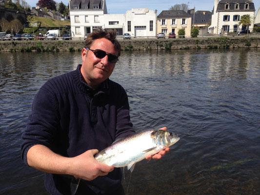 la pêche aux leurres et grande alose