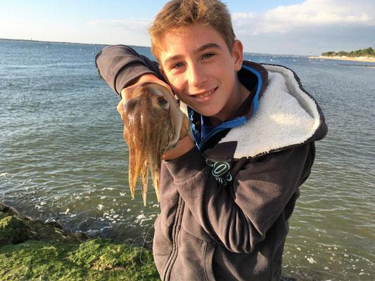 Jolie seiche pêchée sur le bassin d'Arcachon