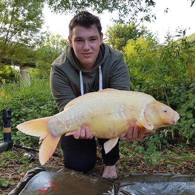 Albino-Karpfen  9,2 kg (Jan)