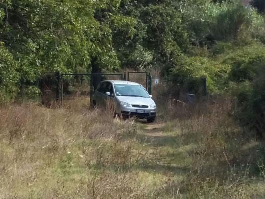 Qualcuno entra al parco direttamente in auto...