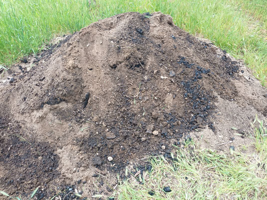 Permafert midden with brown clayey loam, cow manure, bentonite clay, blood and bone and BMC