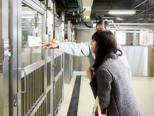 岡山県動物愛護センターにて
