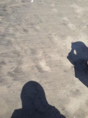波打ち際は歩きやすい!