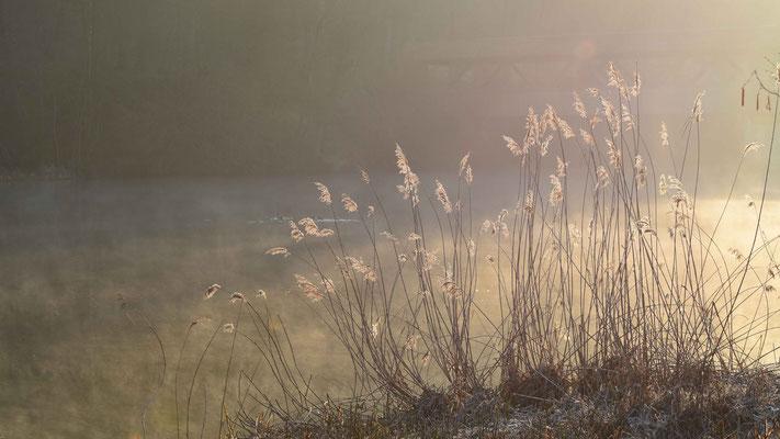 Reuss, Fluss, Morgensonne, flowfly