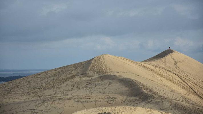 Sandduene, Dune de Pilat, Frankreich, flowfly.photo