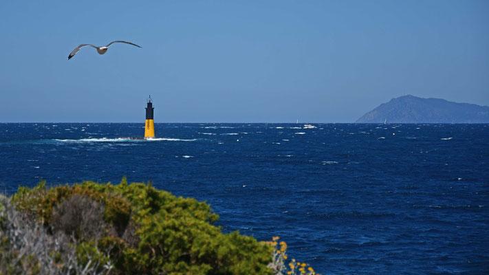 Leuchtturm, Porquerol, Mittelmeer, Südfrankreich, flowfly