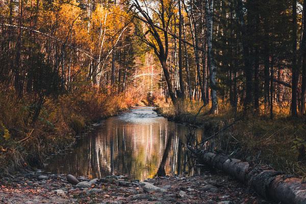 Am zweiten Tag der Wanderung sah der Weg manchmal auch einfach so aus. Er wurde zu einem Fluss!