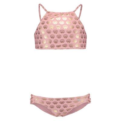 "Shiwi Bikini "" Golden Shell"",soft pink, div Größen,   29,99€"