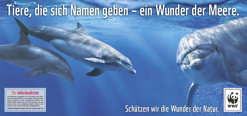 Spinas Civil Voices für WWF