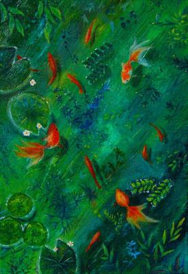 水草の挟間で SM sold out   浅く清澄な水辺で泳ぐ金魚たち、水草と戯れて。