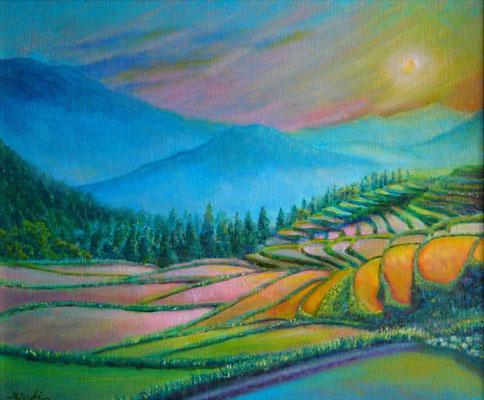《棚田の輝き》F8 幾重にも織りなす棚田。 いにしえから続くお米作りの息吹に触れて……☆ 訪れた丸山千枚田にて