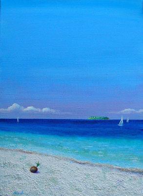 南の島 F4  sold out