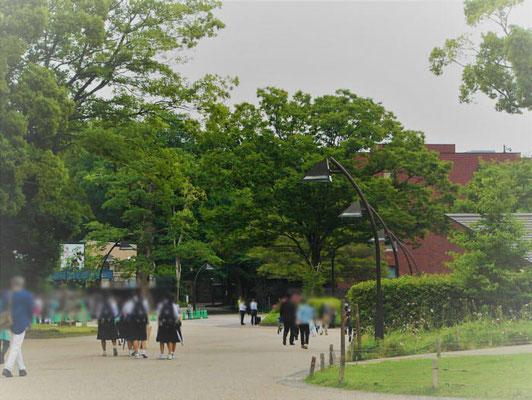 ありがたく東京都美術館に展示して頂けました。嬉しいです。