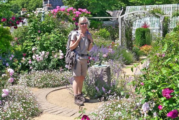 Blühende Gärten in England