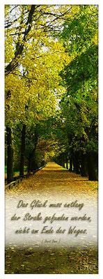 Das Glück muss entlang der Straße gefunden werden, nicht am Ende des Weges.  [ David Dunn ]