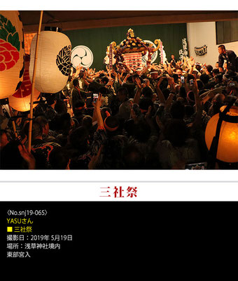 YASUさん:三社祭 ,2019年5月19日,浅草神社境内