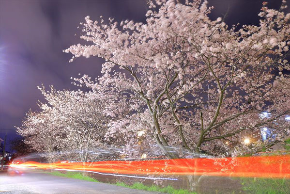 <s20-129>けーすけさん:闇夜の煌めき/2020年4月4日(土)/長沢川河川敷