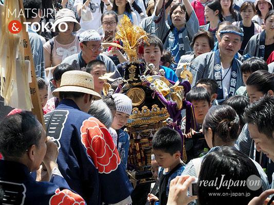 町内神輿連合渡御〈雷門東部〉子供神輿 @2017.05.20 (snj17-035) ⓒm.kataoka