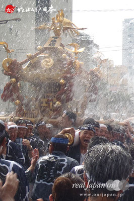 〈富岡八幡宮例大祭〉神輿連合渡御 三十五番: 下木場 @2014.08.17