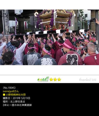 svanejyu8さん:小野照崎神社大祭 ,2019年5月19日,西浅草