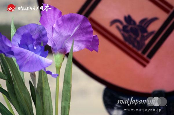 〈三社祭〉浅草あやめ連 @2012.05.20