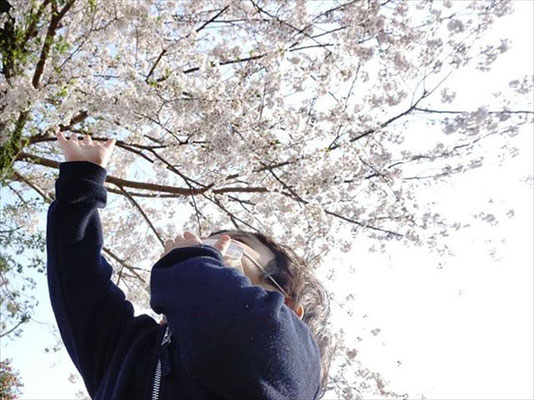 <s20-171>green_peas_さん:また来年/4月8日(水)/神奈川県 深見神社