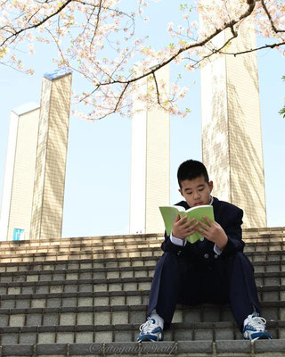 〈s20-121〉satogawa.9carpさん:入学式の代わりに/4月/東京都