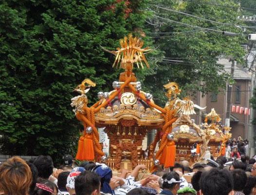 北澤八幡神社例大祭_010 ©北澤八幡秋祭り実行委員会