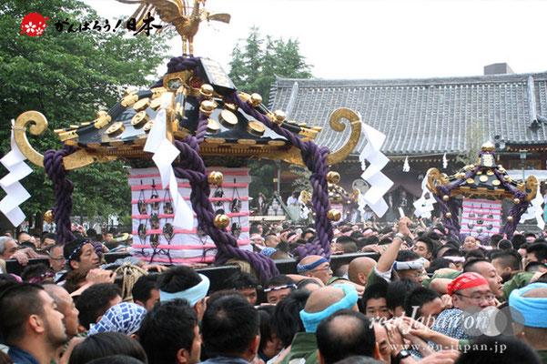 〈三社祭〉本社神輿・氏子宮出し渡御 @2012.05.20
