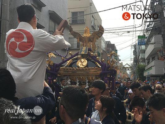 旗岡八幡神社 宮神輿完成披露渡御 2017年7月16日 HHJMM_009