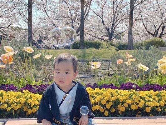 <s20-186>ruuuu___lll7さん(あやみさん):桜とお花/4月4日/荒子川公園