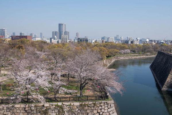 〈s20-110〉ぽせいどんさん:大阪、春の陣/2019年4月4日(木)/大阪城