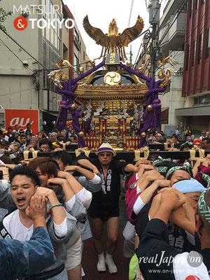 旗岡八幡神社 宮神輿完成披露渡御 2017年7月16日 HHJMM_004