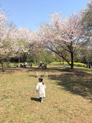 〈s20-039〉たまろさん:お山の上公園/3月21日(土)/横浜