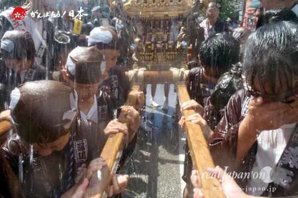 〈深川神明宮例大祭〉神輿連合渡御 子供神輿: 森下五丁目 @2012.08.19