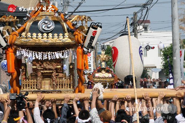 浦安三社祭〈猫実・連合渡御〉前:西組・本社神輿 差し/後:前:東組連合・本社神輿 @2012.06.17